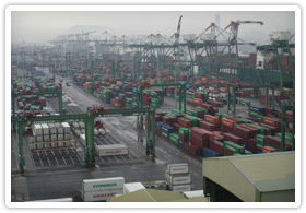 Large container port with multiple cranes